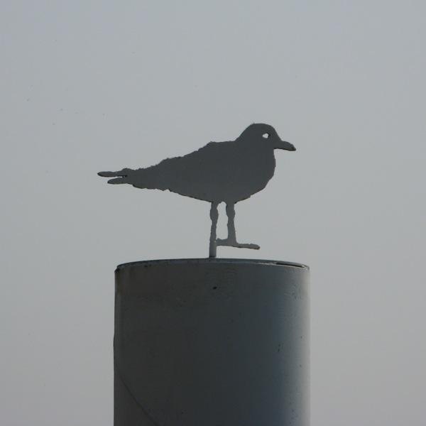 ww gull