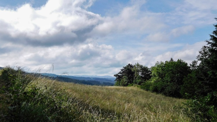 view towards the Allier Valley, June 2016
