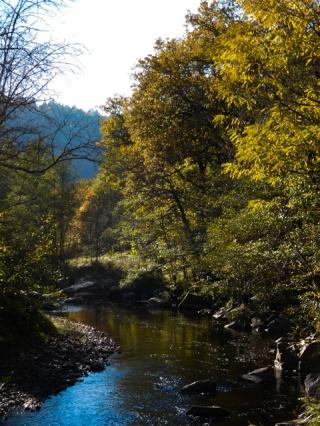 River Senouire at Lavaudieu