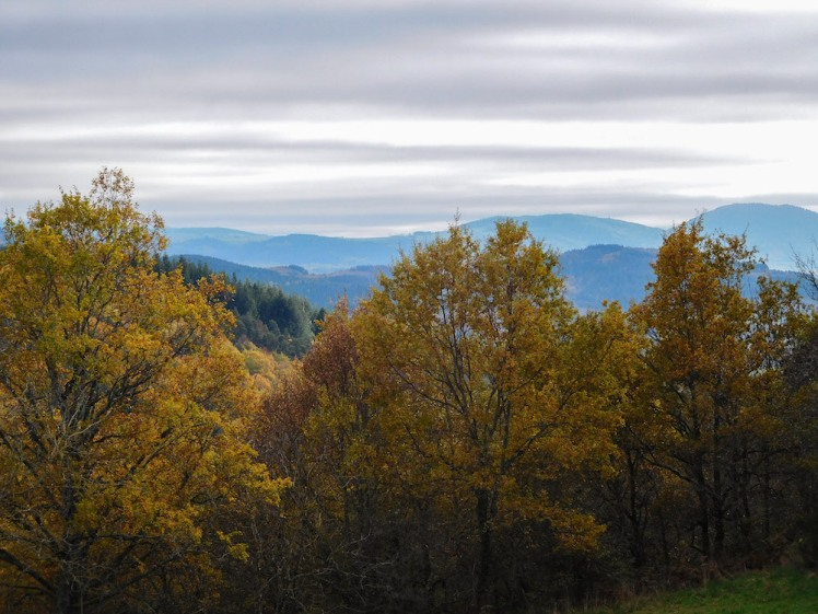 autumn trees and distant hills