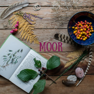 Moor Collection